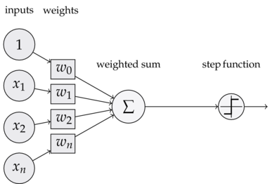 The mathematical model of a perceptron.